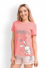 Купить Clever Bunny